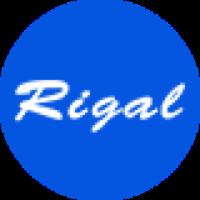 瑞格尔投影仪