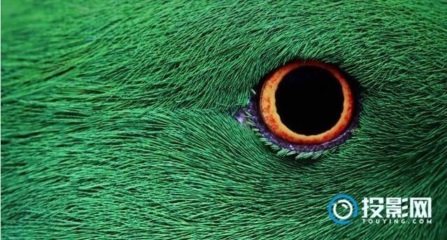 奥图码4K投影机评测,感兴趣的来看看吧!