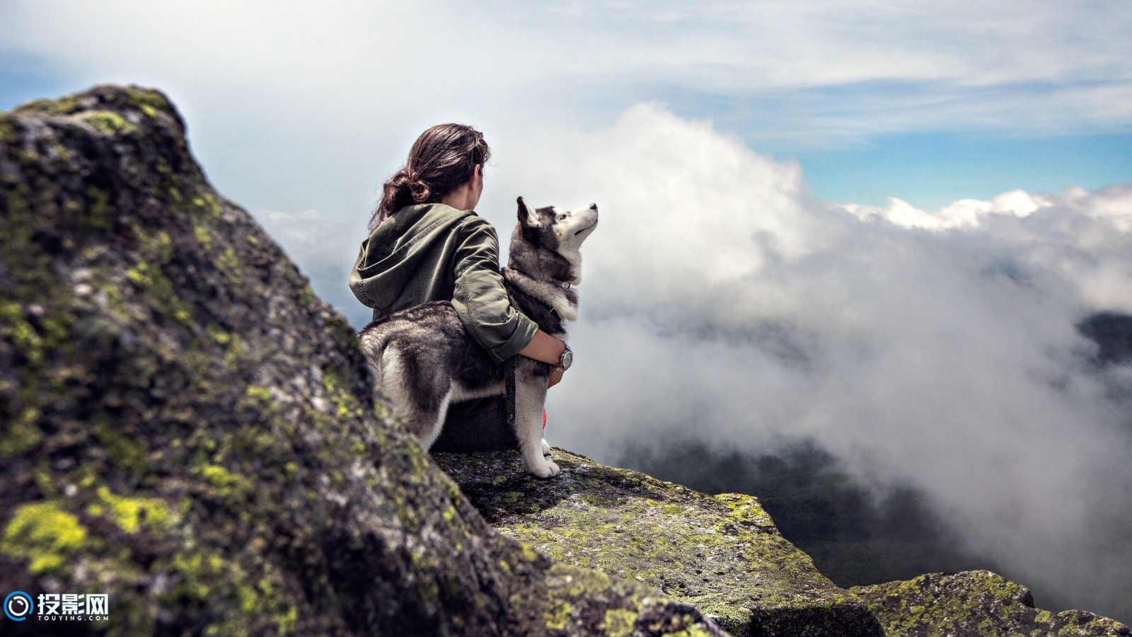5K 美女和狗图片8P [分辨率5120x2880x21.9MB]