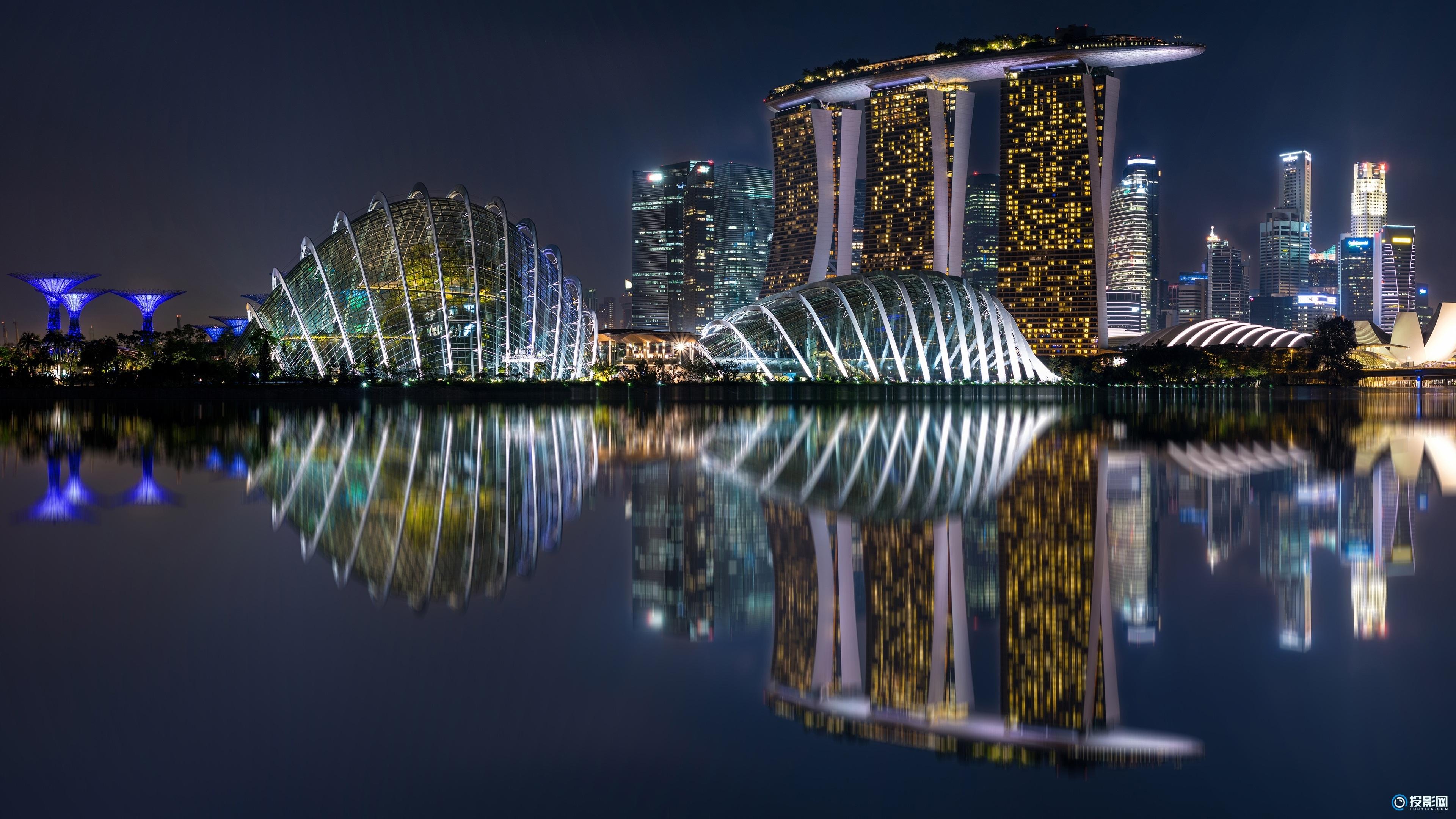 4K 新加坡滨海湾花园夜景图片  8P